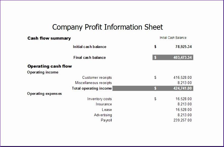 pany profit information sheet 1