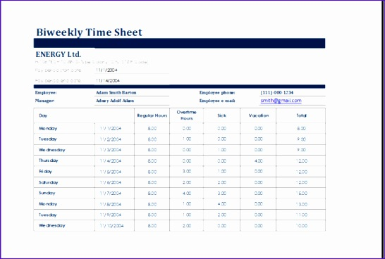 biweekly time sheet 600x400