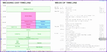 Day Of Wedding Timeline Template Excel Dtabm Lovely organizing is A Good Thing