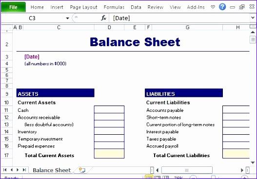 Simple and Standard Balance Sheet Template