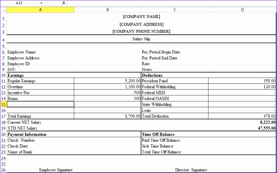 pay slip template