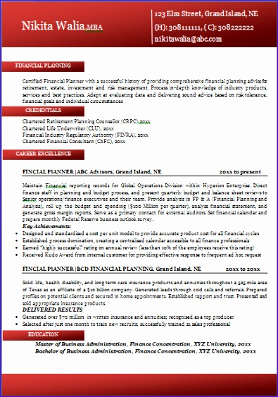 Excellent Professional Resume Format for All