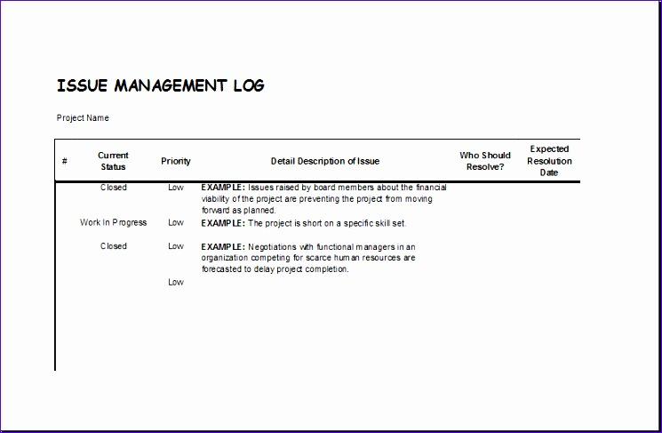 Issue management log
