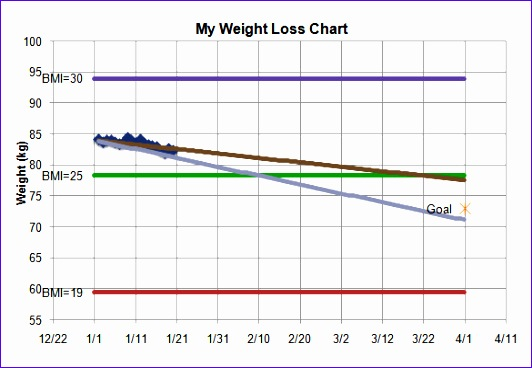Sample Weight Loss Chart Template Kgs