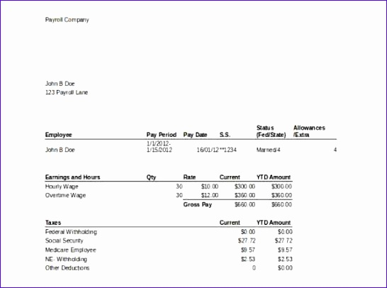 Paycheck Stub Template Free Download Pasoevolistco - Pay stub template pdf