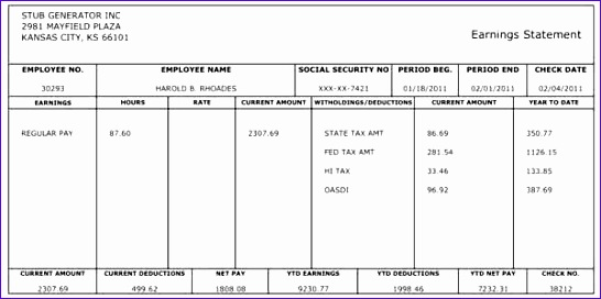Pay Stub Template in Excel Format Free