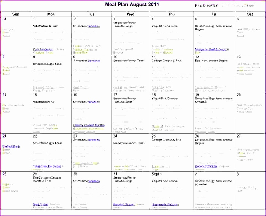 monthly meal planner template aug2011