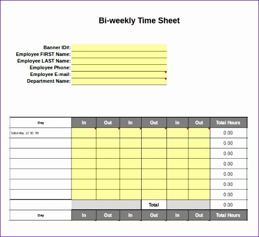 Excel Biweekly Timesheet Template Download