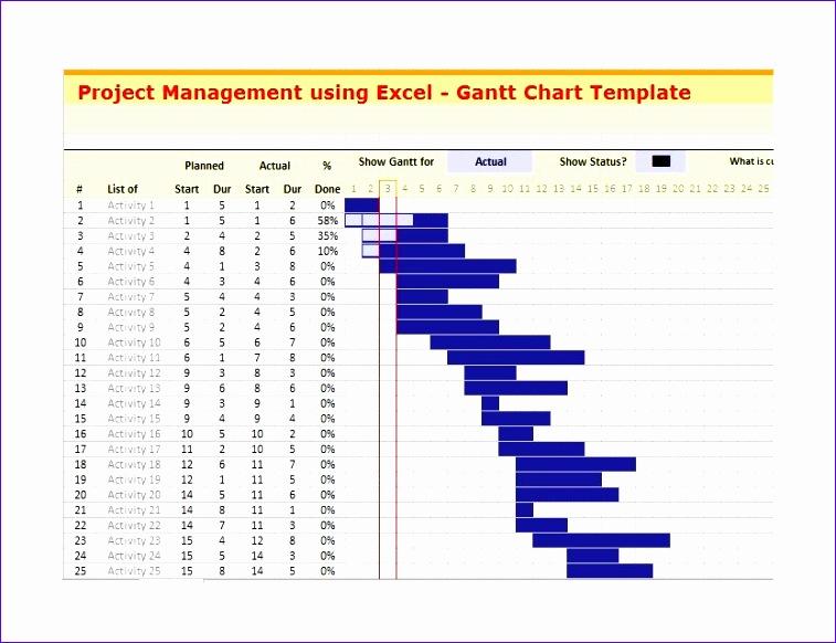 Grantt Chart Template 25