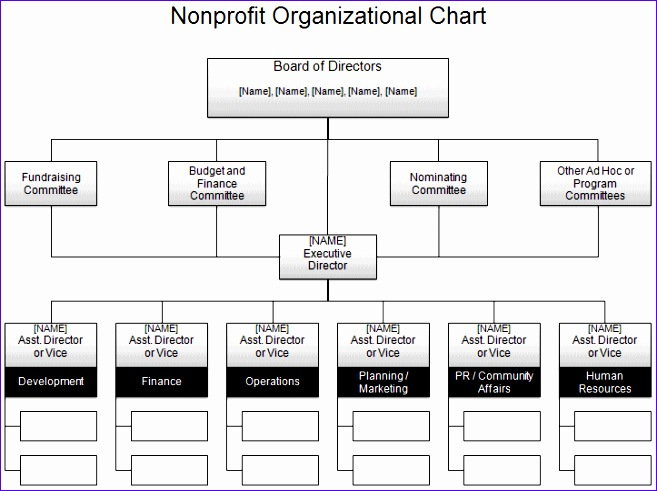 Organization Chart Excel Template Download Ywvqs Fresh Free organizational Chart Template Pany organization Chart