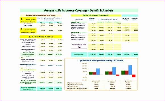sample prehensive personal financial plan created in excel based personal financial planning software xlfinplan 10 638 cb=