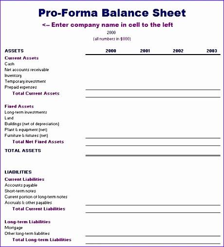 proforma balance sheet template formal word templates inside pro forma financial statements template