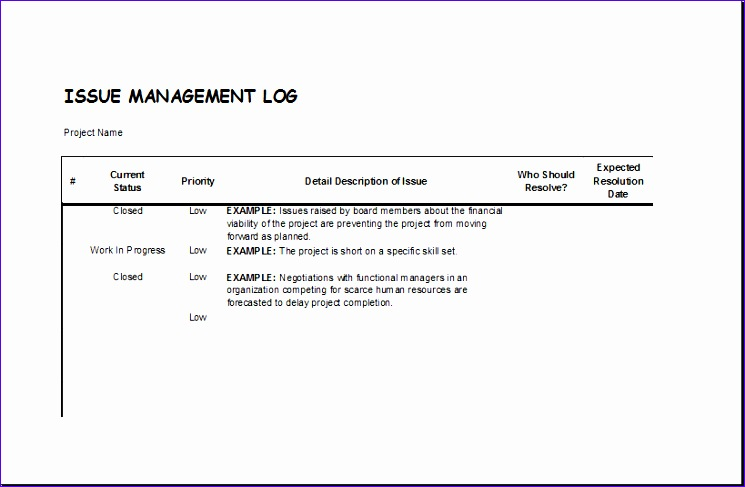 Profit and Loss Statement Gpkmy New issue Management Log Template for Excel