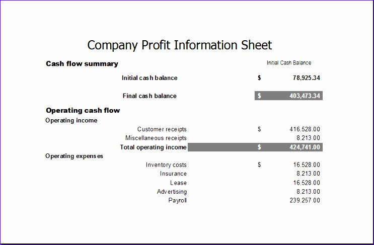 pany profit information sheet 1