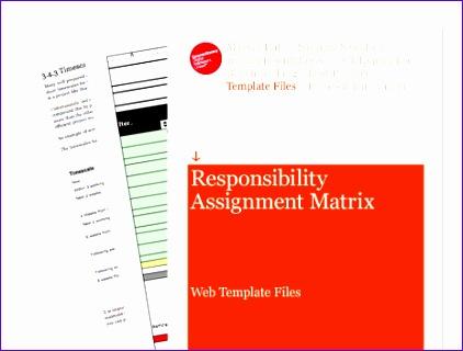 responsibility assignment matrix excel template