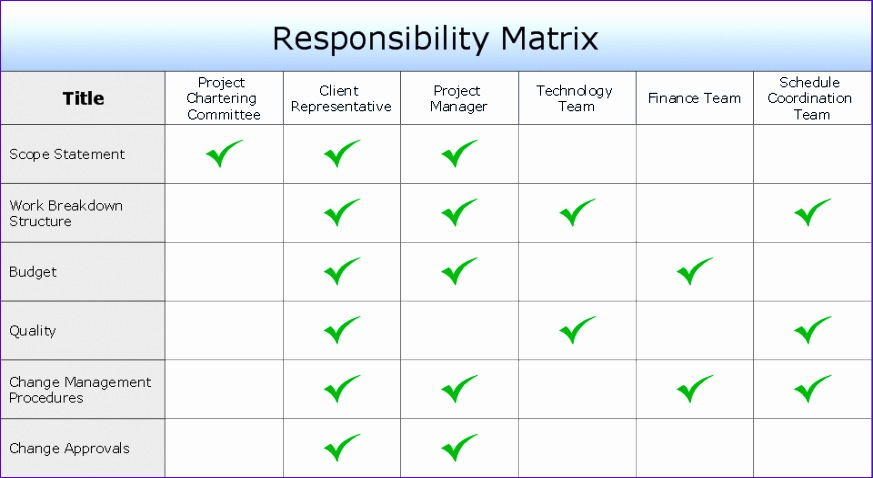 Involvement matrix Distribution of responsibilities