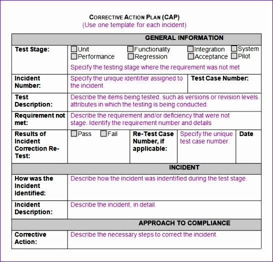 CORRECTIVE ACTION PLAN CAP2
