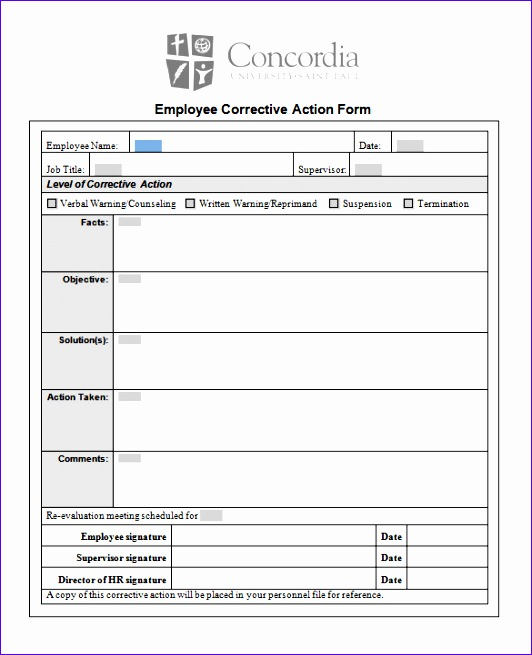 Employee Corrective Action Form Template