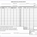 Travel Expense Report with Mileage Log Wcpww Lovely Blank Expense Report Business Reports format