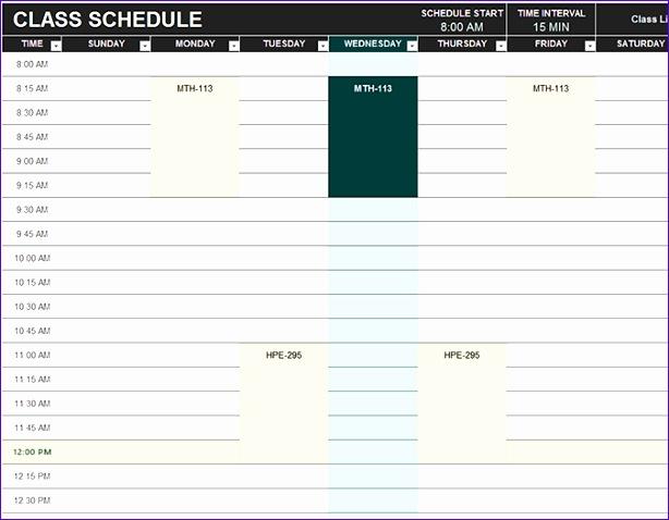 9 Volunteer Schedule Templates  PSD DOC  Free