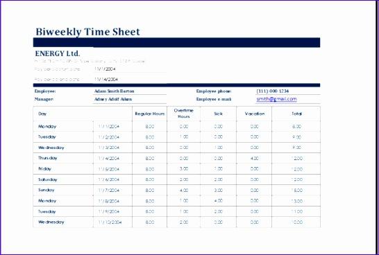 biweekly time sheet 600x400