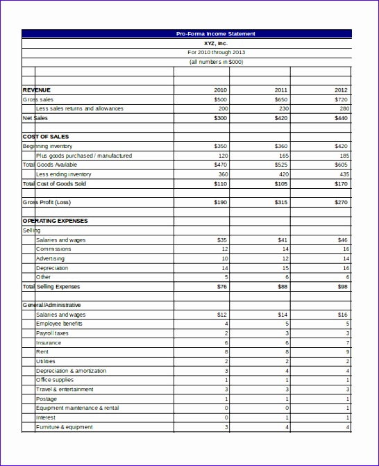 Pro Forma Example Excel: 8 Excel Income Statement Template
