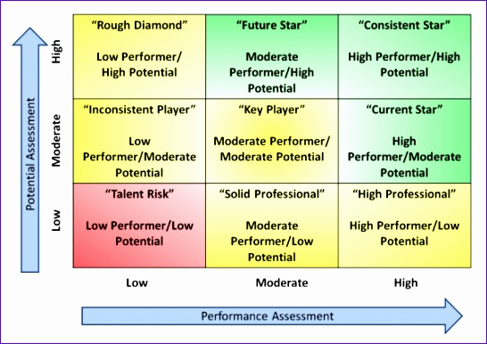 Performance Matrix Template Excel Fxewd New Development at the top Use the 9 Box to Develop Talent 600420