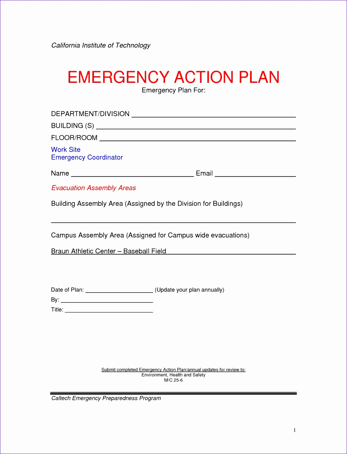 emergency action plan template 2 11601518