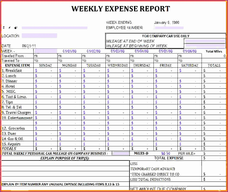 excel report template expense report large
