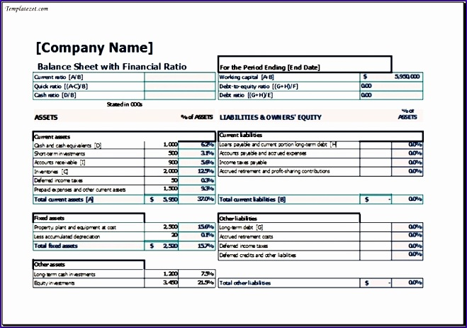 balance sheet with financial ratio template excel 659462