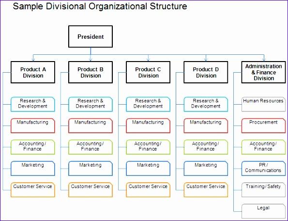 organization chart international