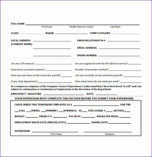 employment authorization form example