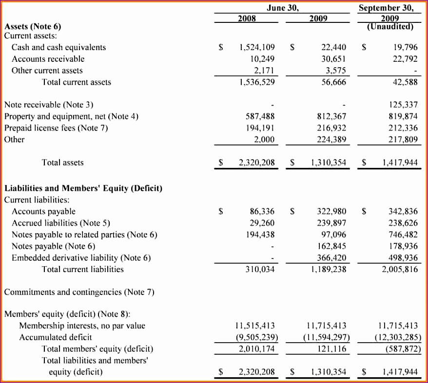 llc balance sheet 878787