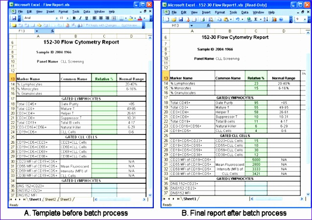 excel report template 1348 637450