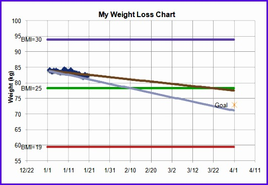 Sample Weight Loss Chart Template Kgs 532368
