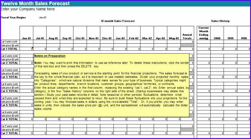 12 Month Sales Forecast Template Excel 851472
