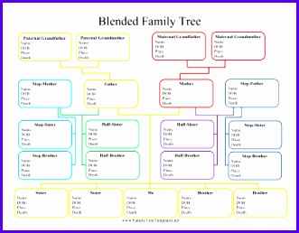 Blended Family Tree Template 331258