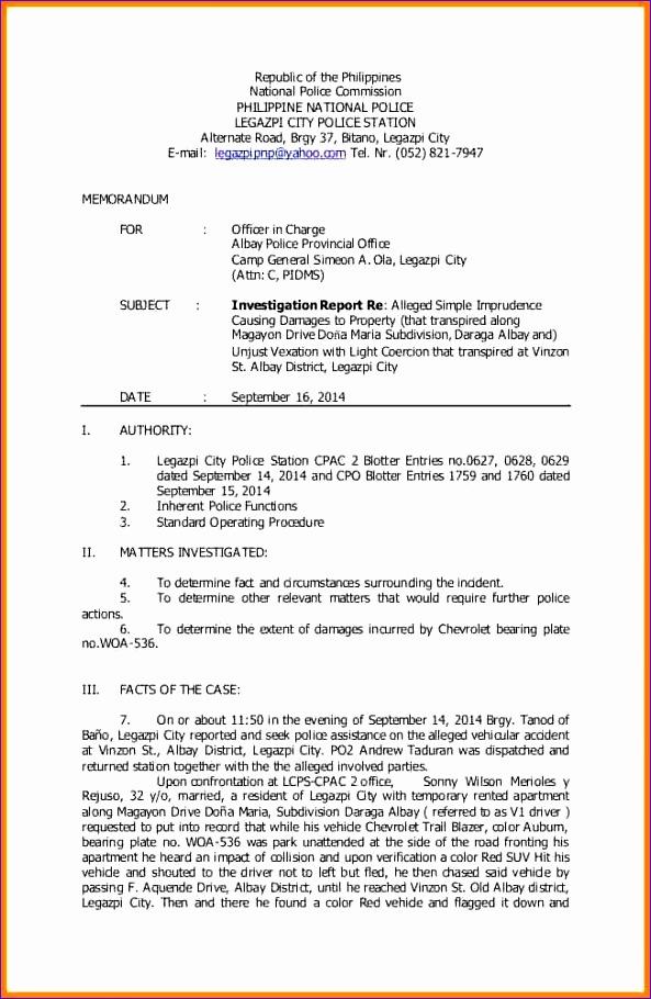 13 investigative report example 593910