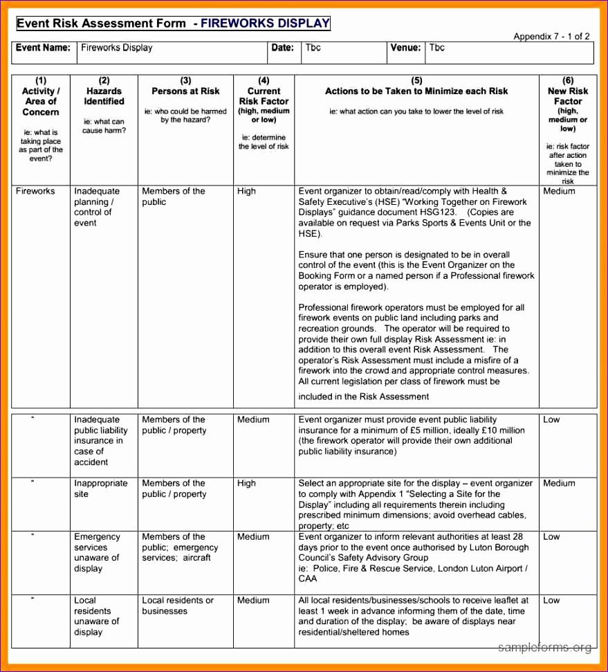 12 risk evaluation template