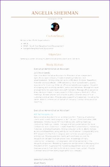 executive administrative assistant cv examples 364552