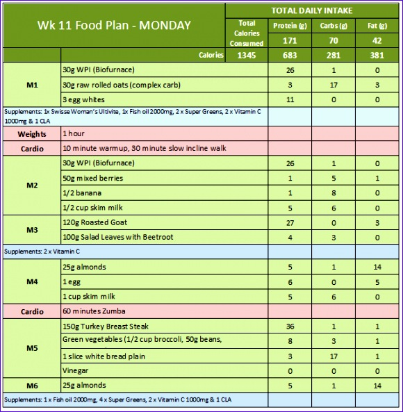 week 11 food diary sample 580593