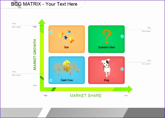 Excel Irr Template Nncwa Inspirational Examples Bcg Matrix