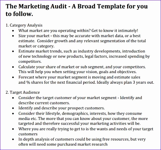 marketing audit templates 546509