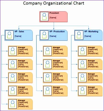 organizational chart 434462