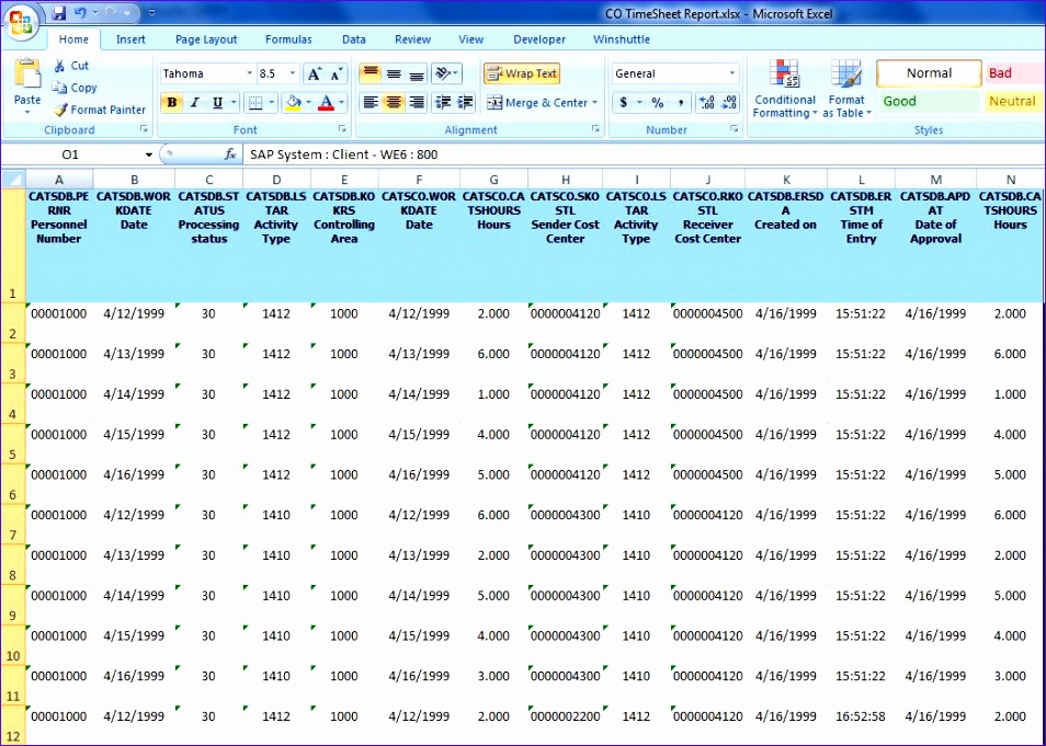time sheet reports 954681