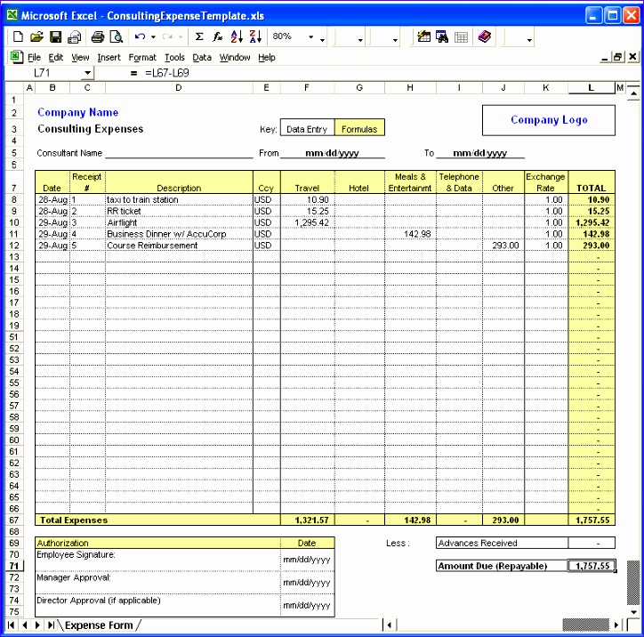 excel template expenses 607 724716