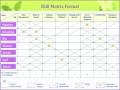 12 Excel Training Matrix Template
