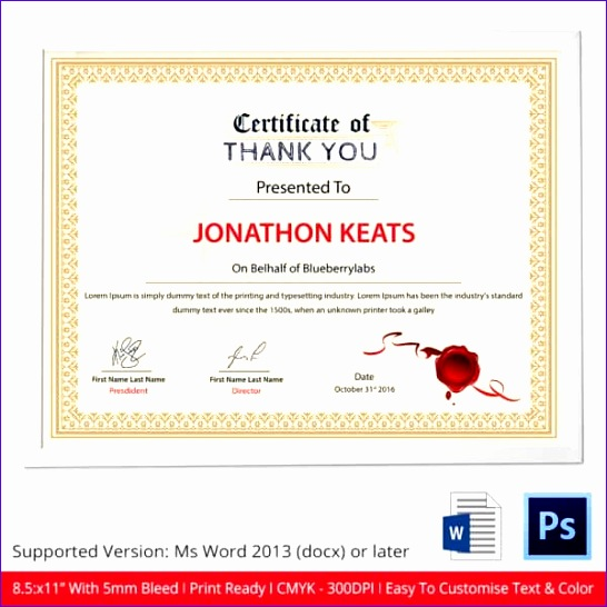 11 excellence award certificate template exceltemplates word certificate templates 546546 yelopaper Image collections