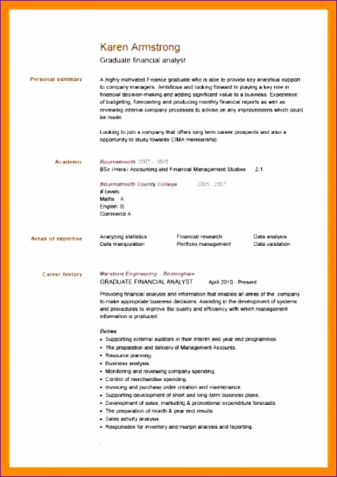 13 example of excellent cv 482681