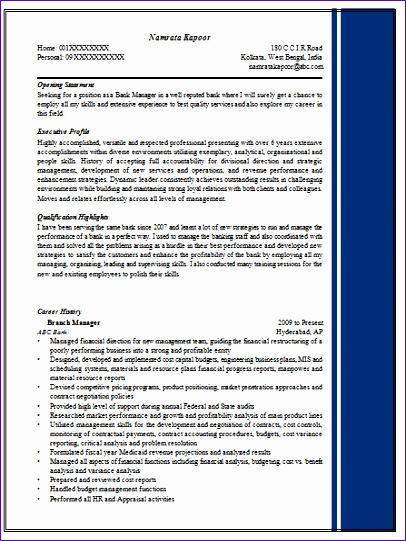 excellent resume sample for managers 406541